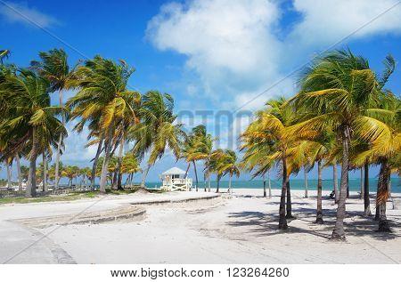 Crandon park Beach of Key Biscayne Miami USA