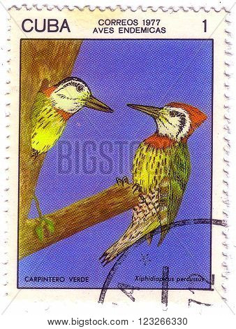 Cuba - Circa 1977: A Stamp Printed In Cuba Shows Bird Woodpecker Series , Series Cuban Birds, Circa