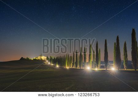 Italy, Val d'Orcia - Nov 01: Starry sky in the cypress avenue   in the valley on November 01, 2015 in Val d'Orcia, Italy