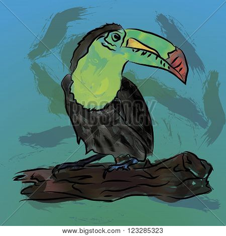 Watercolor toucan bird sitting on a branch. Vector illustration
