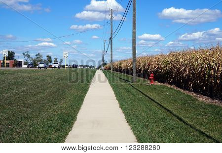 PLAINFIELD, ILLINOIS / UNITED STATES - SEPTEMBER 20, 2015: A sidewalk lies adjacent to a cornfield in Plainfield, Illinois.