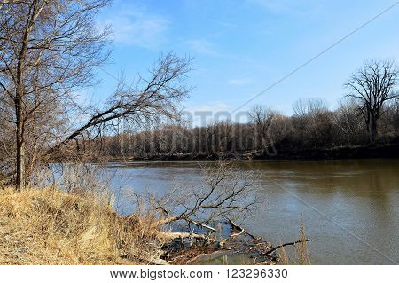 River flowing in the wetland during spring