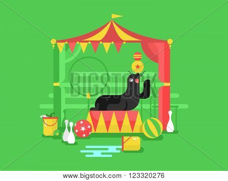 Fur seal in a circus. Animal mammal, marine character trained with flipper, vector illustration