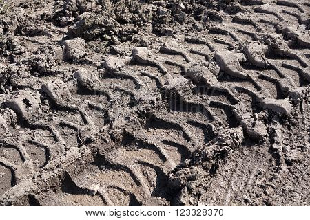 tire tracks on a muddy dirt road