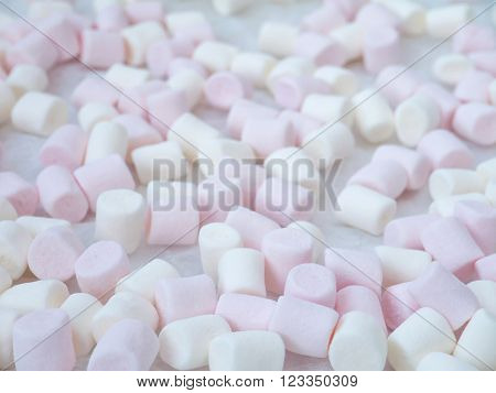 White and pink marshmallow shallow focus background