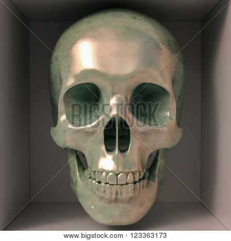 3d render of skull in box. Front view