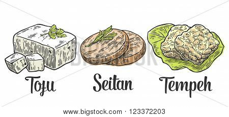 Set Vegan and Vegetarian food. Tofu Seitan Tempeh . Vector black vintage engraved illustration isolated on white background