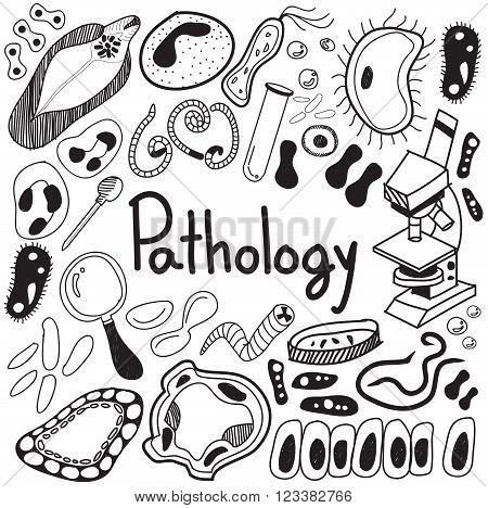 Pathology biology doodle handwriting icons of germ and pathogen for human disease such as virus bacteria fungus amoeba and Protozoa in white isolated paper background for education presentation or subject title create by vector