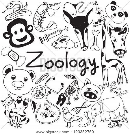 Zoology biology doodle handwriting icons of animal species and education tools in white isolated paper background for science presentation or subject title create by vector poster