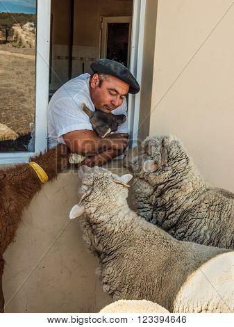 Puerto Madryn, Argentina - December 13, 2012: Argentinean farmer with their animals on the farm near Puerto Madryn, Patagonia, Argentina.