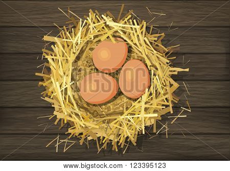 Bird straw nest with eggs on wood background. Vector illustration