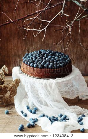 Chocolate Cake With Icing, Blueberries. Chocolate Cake With Choc