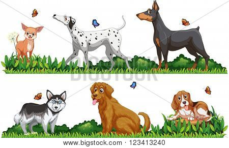 Many type of dogs in the park illustration