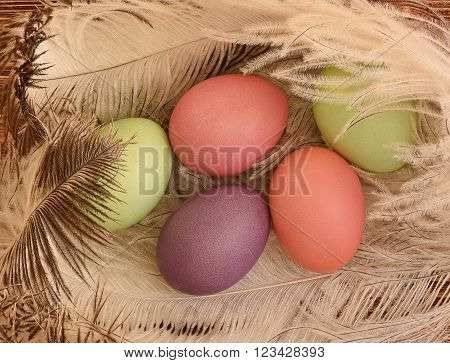 Eggs on pens on a wooden background