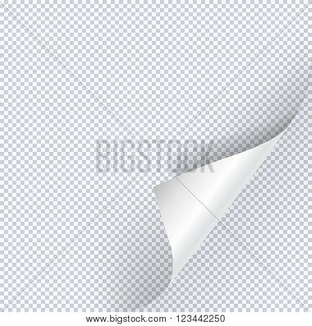 Page curl vector. Page curl corner vector isolated. Template page curl. Note paper with curled corner. Blank note page. Vector page.
