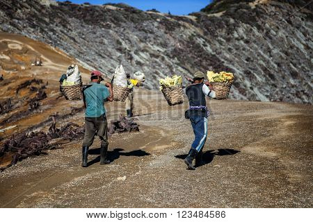 Kawah Ijen, Indonesia - march 21 2013 : Worker carries sulfur inside Ijen crater in Ijen Volcano. Miners each carry up to 90kg of sulfur up steep cliffs.