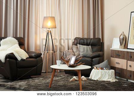 Stylish comfortable living room