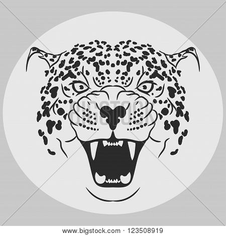 Leopard Portrait. Angry wild big cat head. Cute face of African Cat. Aggressive animal with bared teeth, cat tattoo, t-shirt print design