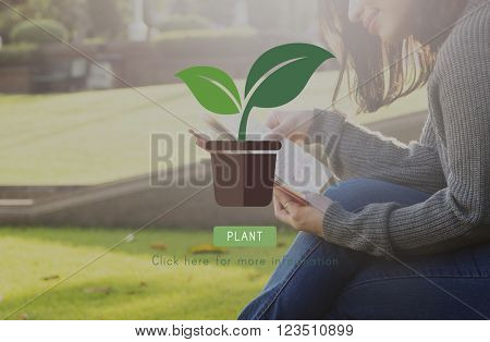 Green Nature Plant Gardening Concept