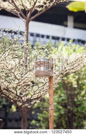 Candle lamp in the garden, stock photo