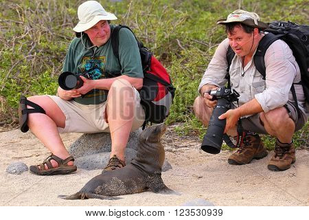 North Seymour, Ecuador - April 19: Unidentified Men Sit Near Baby Galapagos Sea Lion On April 19, 20