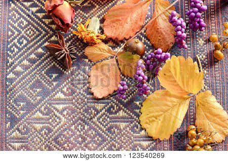 frame of autumn laves and berries on table cloth