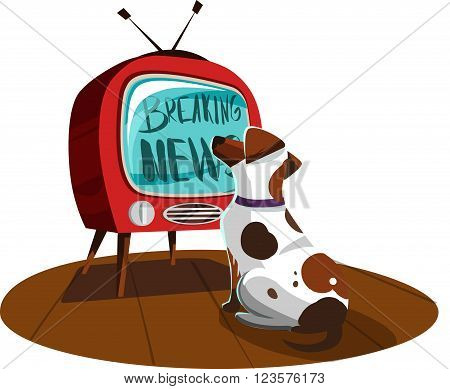 White dog watches the news on TV. Vector illustration