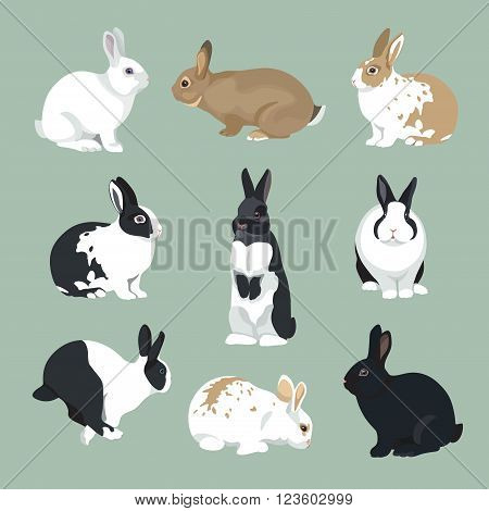 Easter Bunny vector illustration  Rabbits set in retro color style
