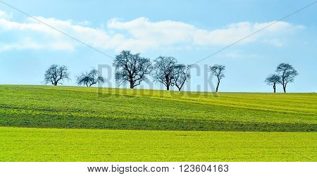 rural scenery at early spring time in Hohenlohe a area at Southern Germany