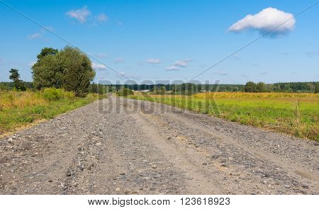 Country macadam road in rural area Ukraine