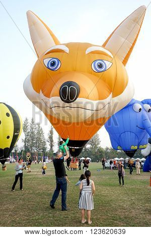 Animal Hot Air Balloon Flying