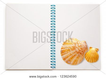 Blank Open Notepad With Seashells