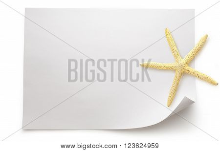 Blank Sheet Of Paper With Sea Star