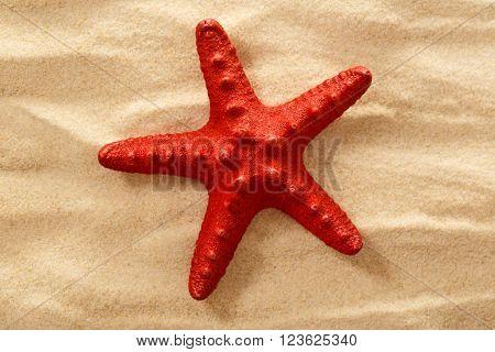 Decorative Red Sea Star On Sand