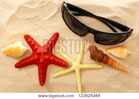 Sunglasses, Seastar And Seashells In Sand