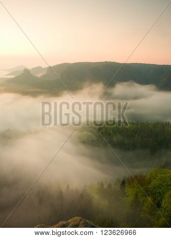 Misty Melancholic Morning. View Into Long Deep Valley Full Of Fresh  Spring Mist. Landscape Within D