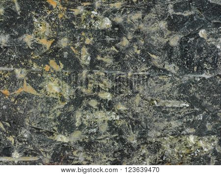 Closeup shot of a piece of grey coloured rock