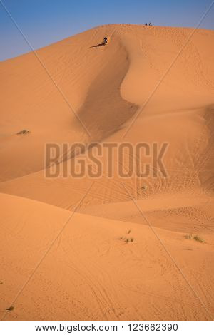 Sand dunes in the Sahara Desert Erg Chebbi Merzouga Morocco
