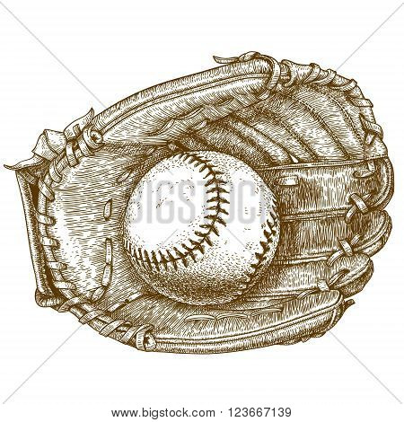Vector antique engraving illustration of baseball glove and ball isolated on white background