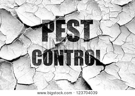 Grunge cracked Pest control background with some smooth lines