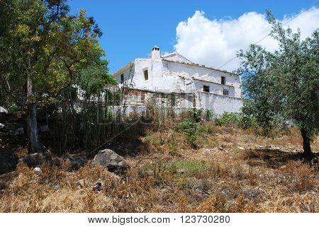 Country finca near Rio Gordo Malaga Province Andalusia Spain Western Europe.