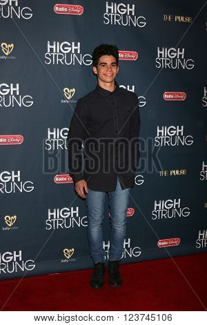 LOS ANGELES - MAR 29:  Cameron Boyce at the High Strung Premeire at the TCL Chinese 6 Theaters on March 29, 2016 in Los Angeles, CA