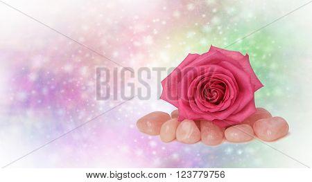Healing Rose Quartz and Pink Rose - a beautiful pink rose place on top of tumbled rose quartz healing stones on a delicate sparkly pastel colored background with plenty of copy space