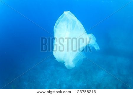 Plastic bags cause pollution and environmental damage to the oceans