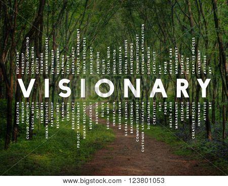 Visionary Vision Introspective Strategist Concept