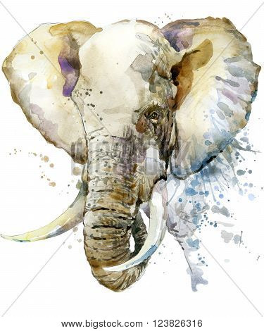 Elephant. Elephant illustration with splash watercolor textured background. Elephant watercolor  illustration for fashion print, poster, textiles, fashion design. Elephant Tee shirt graphics.