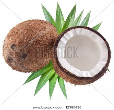 High-quality photos of coconuts on a white background. poster