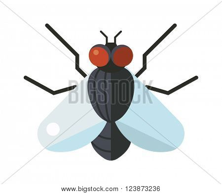 Bluebottle fly insect species calliphora vomitoria bug animal nature macro pest with big eyes hairy legs flat vector.