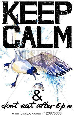 Keep Calm. Keep Calm and do not eat after 6 p.m. Keep Calm Tee shirt design. Seagull watercolor illustration. Sea Gull. Handwritten text. Keep Calm Tee shirt print.