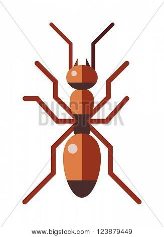 Red ant forest rufa small antenna insect, nature cartoon graphic brown worker flat vector.